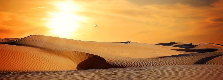 A dry desert.